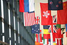 Country flags hanging from the ceiling